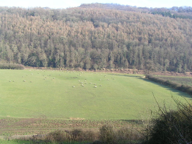Wye Valley at Tintern