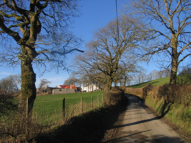 Llwyn- merch- Gwilym