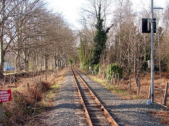 Vale of Rheidol Railway track at Glanyrafon