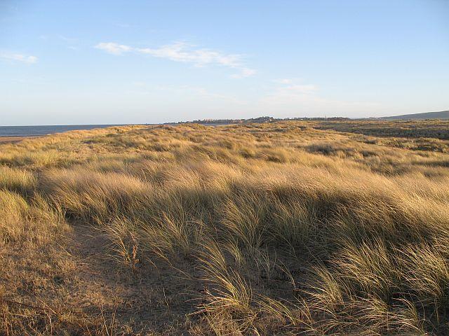 Dunes, Tyne Estuary