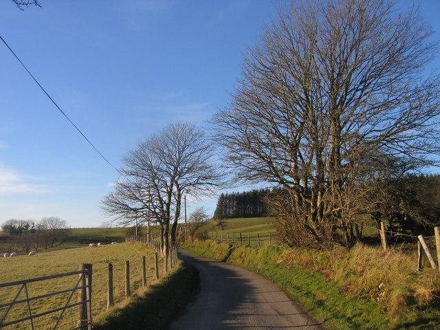 Ffordd Wledig ger Bontnewydd / Country Lane near Bontnewydd