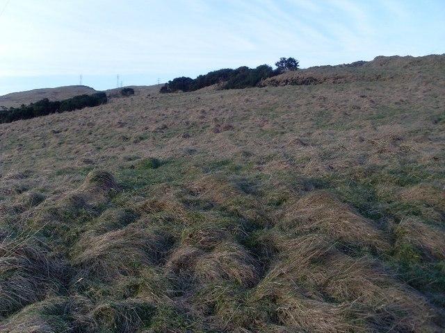 Moorland on Loch Humphrey Burn valley