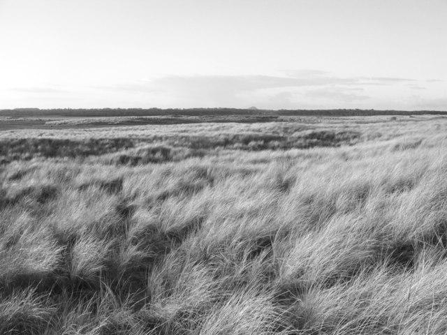 Dunes, John Muir Country Park