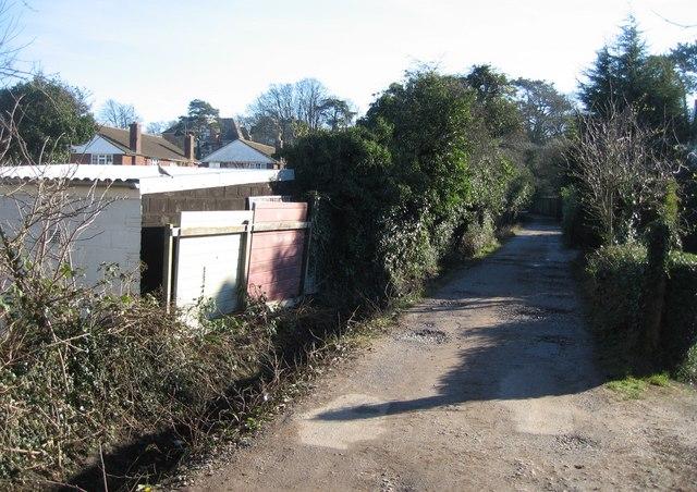 Hardy Lane