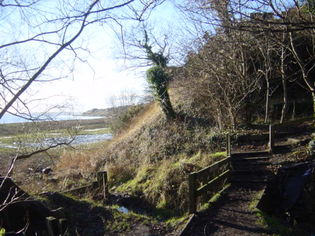 Footbridge on Mersey Way near Dungeon Cliffs