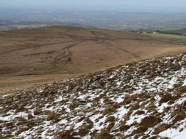 Hillside below Yes Tor