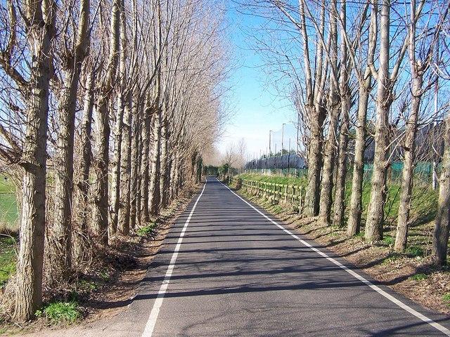 Canterbury Lane