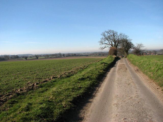 Fields in February sunshine