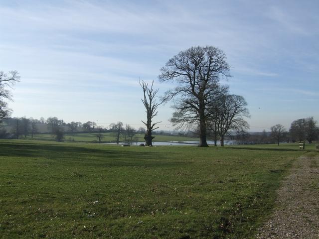Parkland at Hatherton Hall