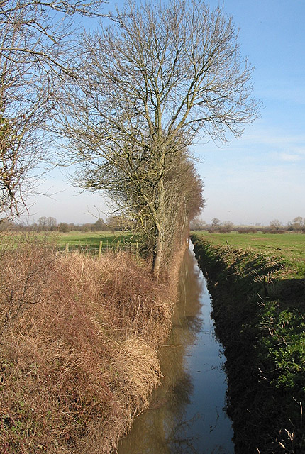 Drainage channel on Minsterworth Ham