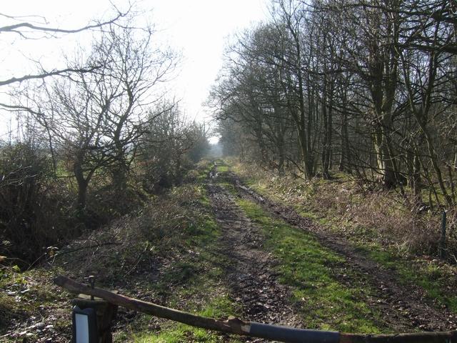 Bridleway alongside Fullmoor Wood