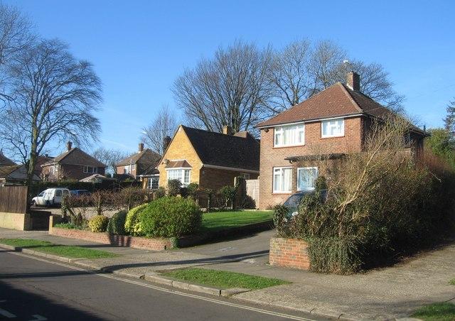 Upper Chestnut Drive housing