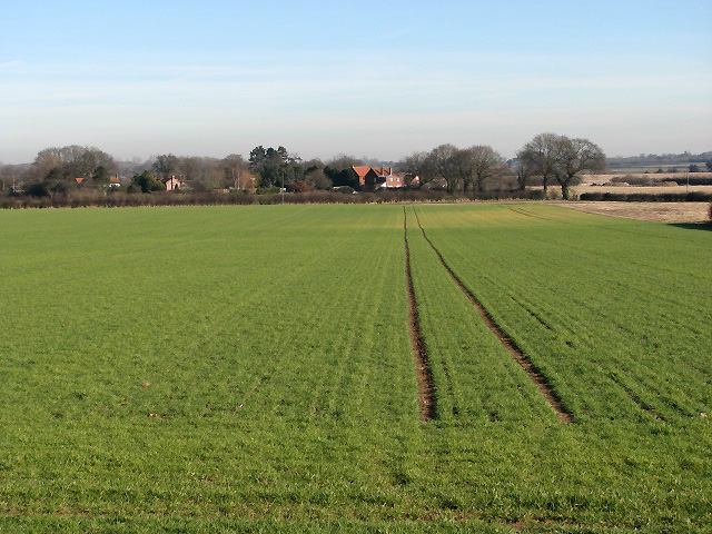 Looking east across fields