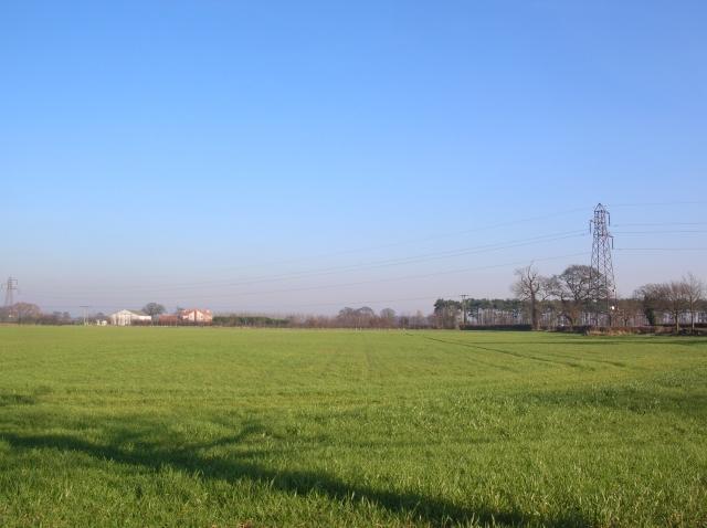 Ridge Farm