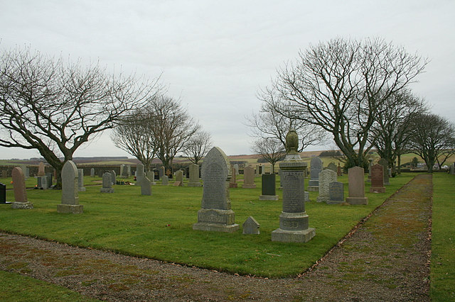 Trees in cemetery by Mauldmoss