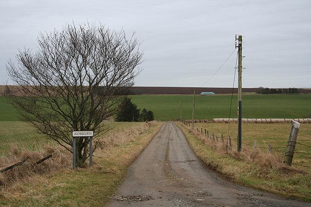 The lane to Auchnagorth Farm
