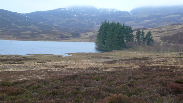 Loch Farleyer plantation