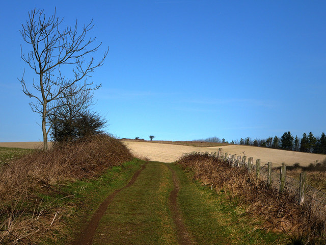 South Downs Way, approaching Beacon Hill