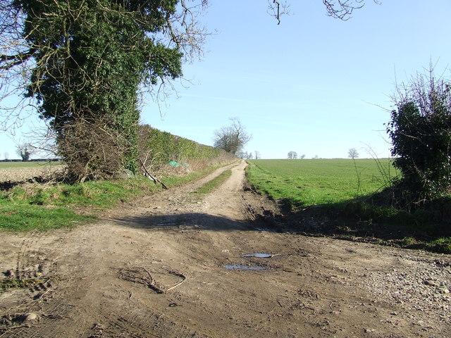 Farm track field boundary