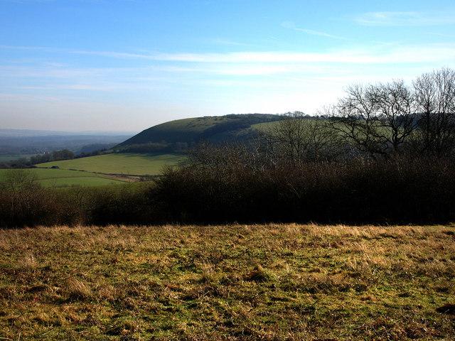 From Beacon Hill, towards Treyford Hill
