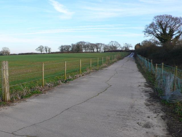 Farm Track near Pulham , Dorset