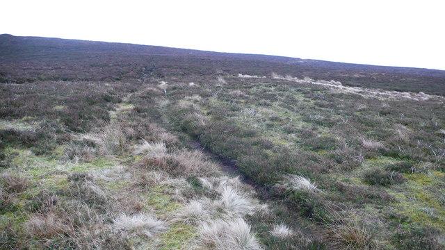 Hill Path near Weem Hill