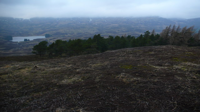 Summit area of Weem Hill