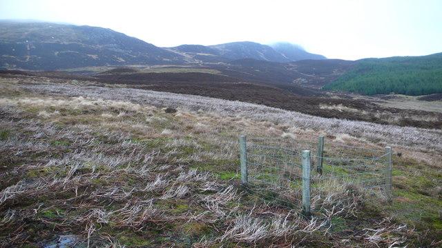 Fenced area on hillside