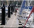 J5081 : Bangor Marina : Week 6
