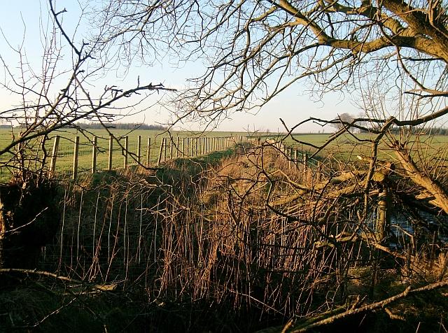 Ditch near Long Plantation