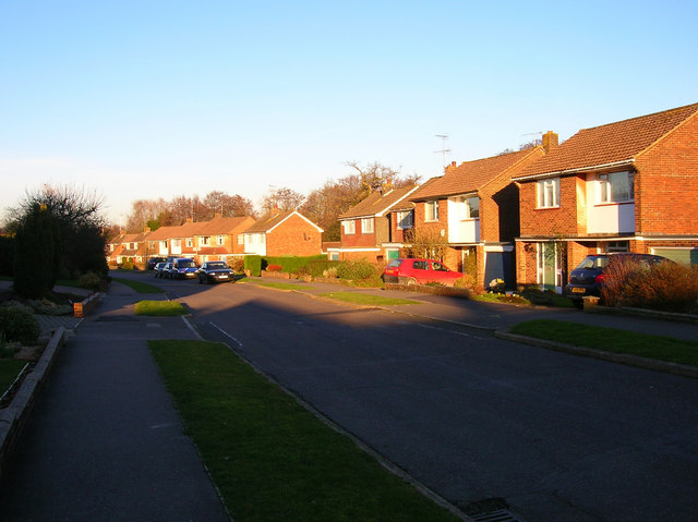 Downs View Road