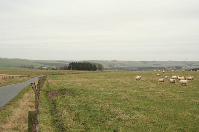 Southbound road through Tillymauld farmland