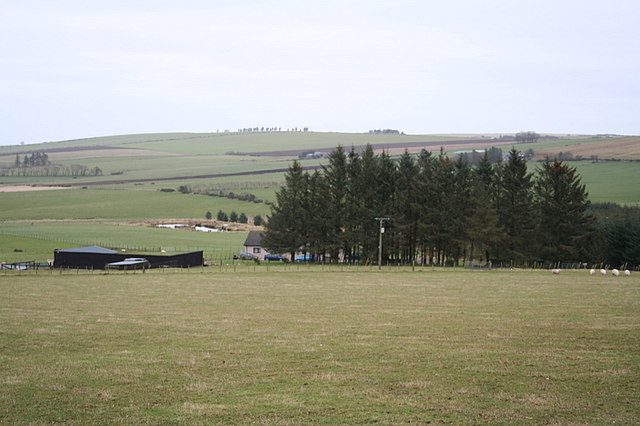 Copse to the north of Sealscrook