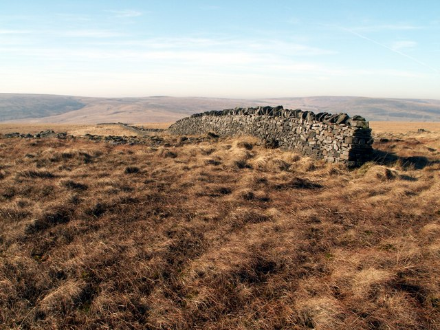 A boundary wall on Horseley Head Moss