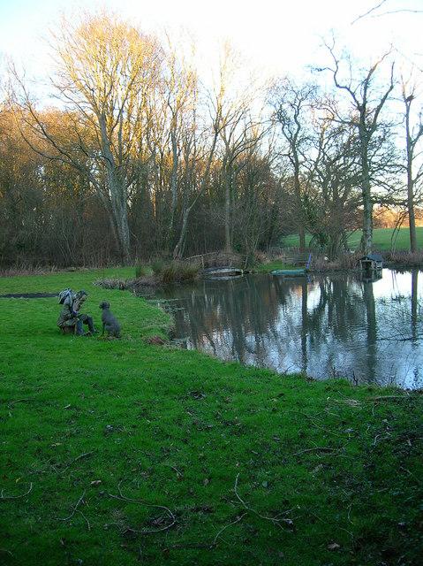 Pond, Woodbine Cottage