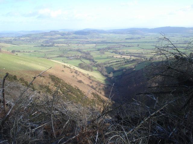 Small valley at Cwm Broadwell Wood