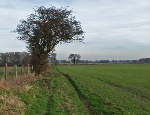 Bridleway, Holme on the Wolds