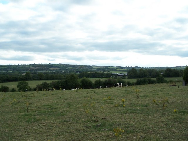 Farmland south of Ballickmoyler