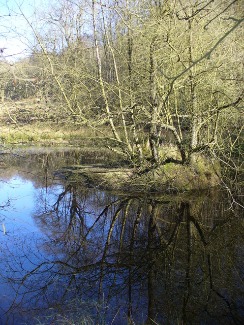 Pond on Gibbet Hill