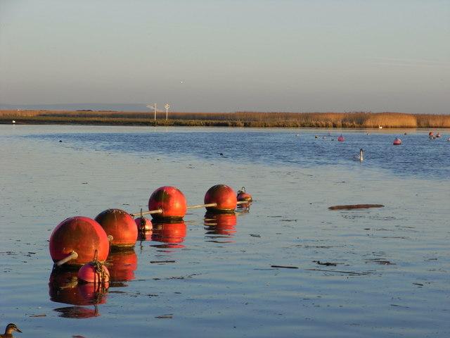Buoys will be buoys, Christchurch