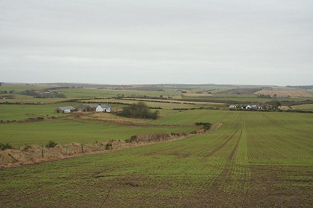 Looking towards Bonnyview and School Croft