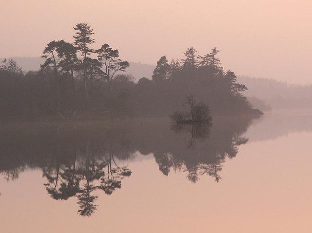 Heathery Ward wood, Mochrum Loch
