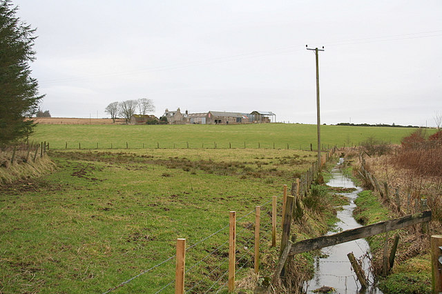 Ditch by North Mains of Culsh