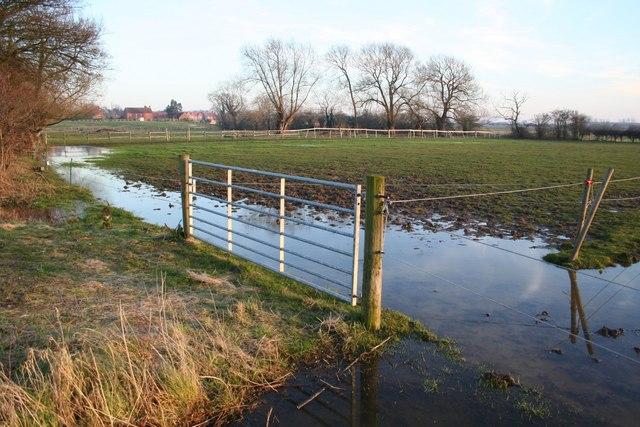 Waterlogged paddock