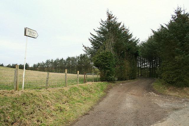 Lane to North Mains of Culsh