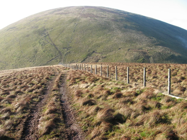 Stood Hill hillside towards Willowgrain Hill