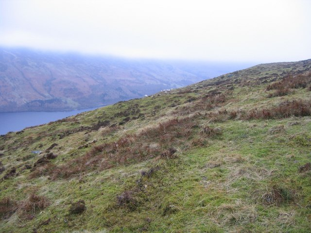 Hillside above Loch Earn