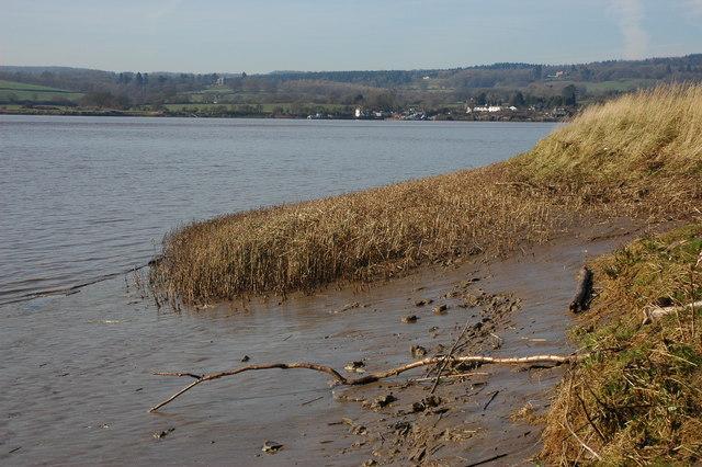 The River Severn opposite Bullo Pill
