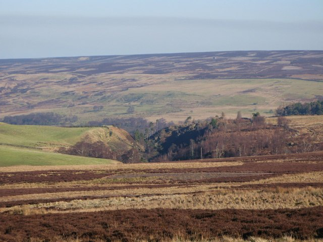 Moorland south of Harwood Shield