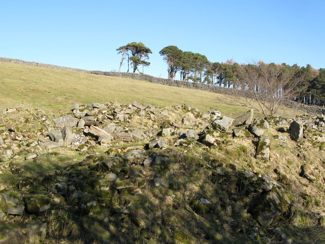 Remains of 16th C bastle house at Riddlehamhope